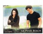 eclipse-twilighturkey (11)
