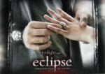 eclipse-twilighturkey (32)